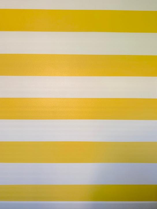 ORC2018_Bold Stripes.jpg